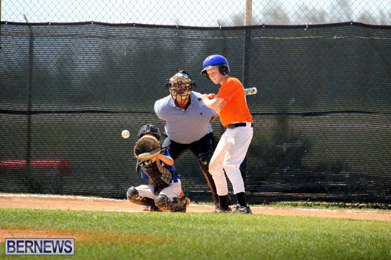 baseball-June-25-2015-15