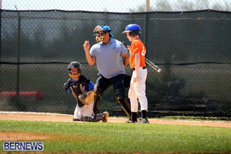 baseball-June-25-2015-16