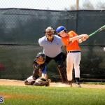 baseball June 25 2015 (17)