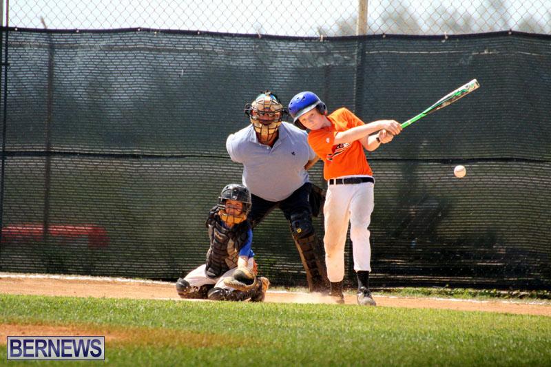 baseball-June-25-2015-17