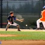 baseball June 25 2015 (19)