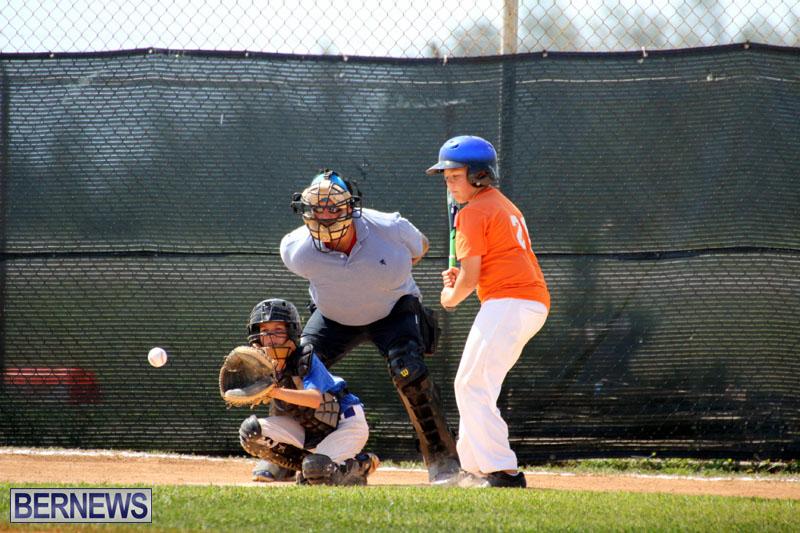 baseball-June-25-2015-3