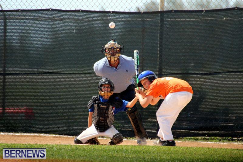 baseball-June-25-2015-4