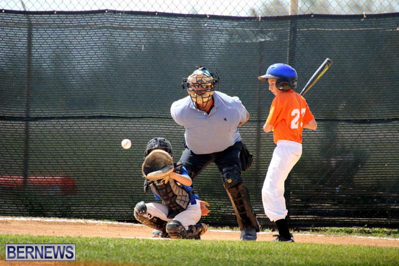 baseball-June-25-2015-5