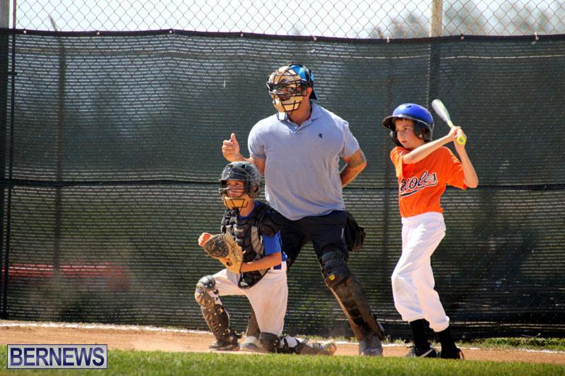 baseball-June-25-2015-6
