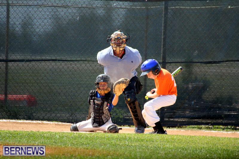 baseball-June-25-2015-7
