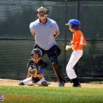 baseball June 25 2015 (8)