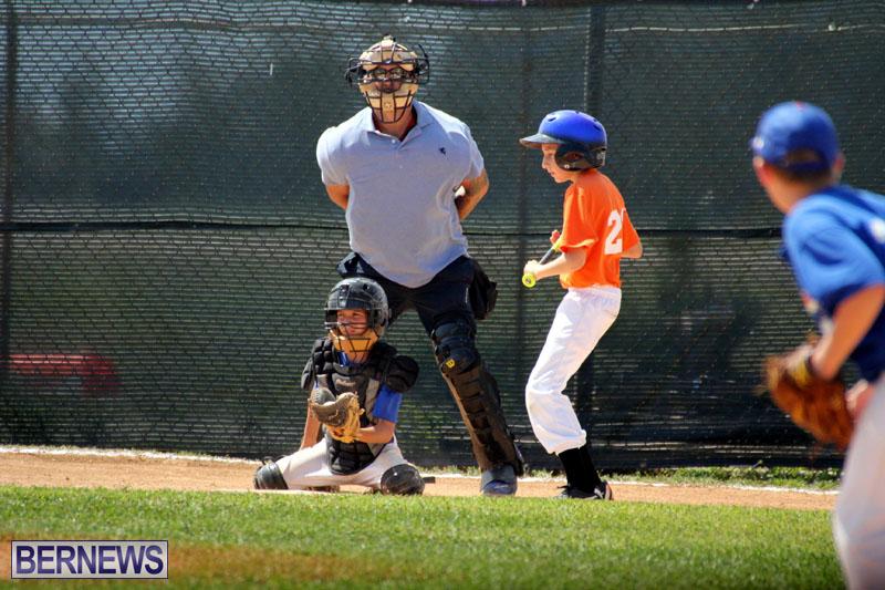 baseball-June-25-2015-8
