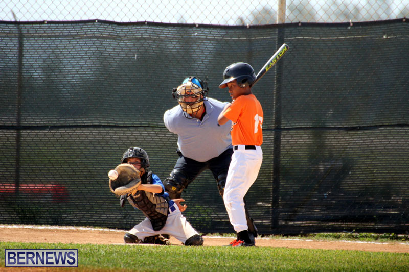 baseball-June-25-2015-9