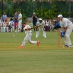 cricket celeb bermuda 2015 (3)
