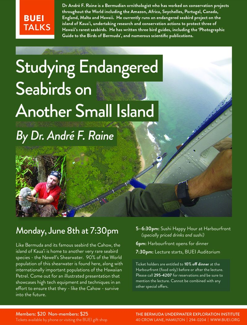 drraine studying endagered seabirds on another small island