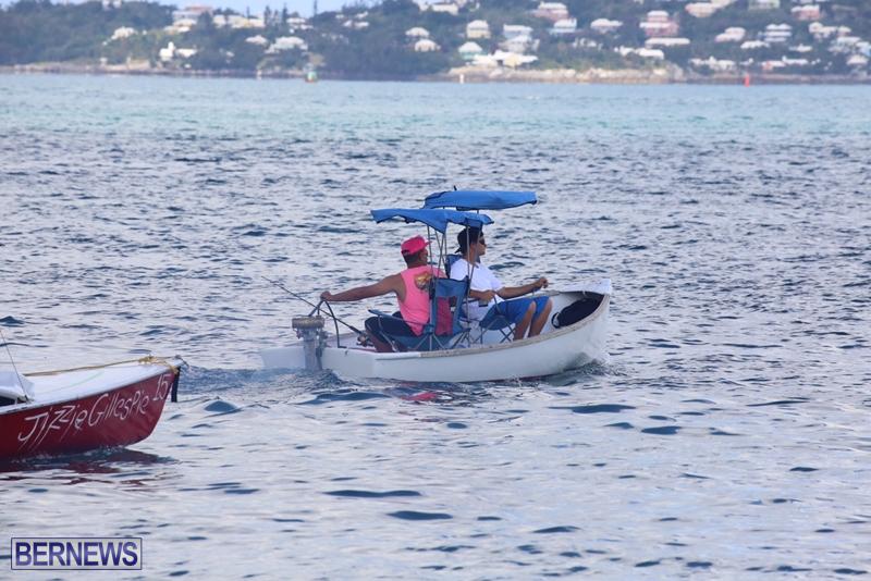 seagull-race-bermuda-june-2015-10