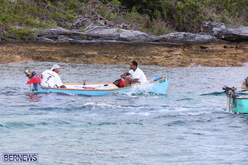 seagull-race-bermuda-june-2015-16