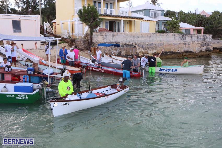 seagull-race-bermuda-june-2015-17