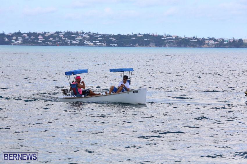 seagull-race-bermuda-june-2015-18