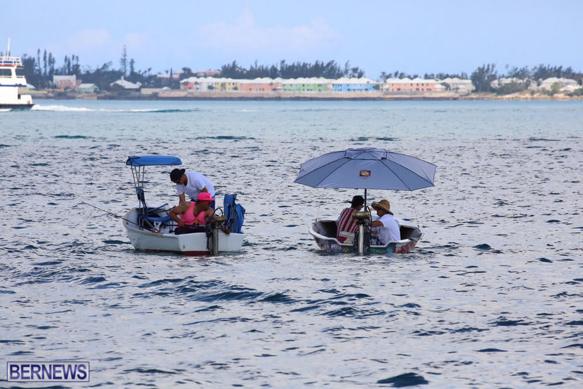 seagull-race-bermuda-june-2015-42