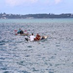seagull race bermuda june 2015 (45)