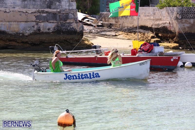 seagull-race-bermuda-june-2015-53