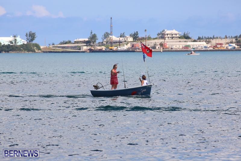 seagull-race-bermuda-june-2015-9