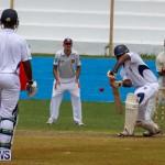 Colts Cup Match Bermuda, July 26 2015-1