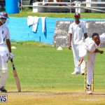 Colts Cup Match Bermuda, July 26 2015-110