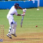 Colts Cup Match Bermuda, July 26 2015-111