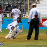 Colts Cup Match Bermuda, July 26 2015-14