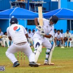 Colts Cup Match Bermuda, July 26 2015-23