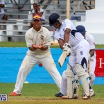 Colts Cup Match Bermuda, July 26 2015-29