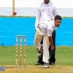 Colts Cup Match Bermuda, July 26 2015-3