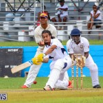 Colts Cup Match Bermuda, July 26 2015-40