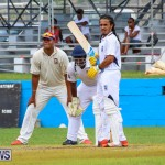 Colts Cup Match Bermuda, July 26 2015-42