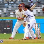 Colts Cup Match Bermuda, July 26 2015-43