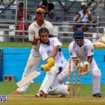 Colts Cup Match Bermuda, July 26 2015-45