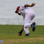 Colts Cup Match Bermuda, July 26 2015-48