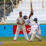 Colts Cup Match Bermuda, July 26 2015-49
