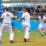 Colts Cup Match Bermuda, July 26 2015-57