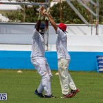 Colts Cup Match Bermuda, July 26 2015-60