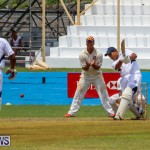 Colts Cup Match Bermuda, July 26 2015-62