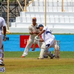 Colts Cup Match Bermuda, July 26 2015-68