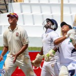 Colts Cup Match Bermuda, July 26 2015-75