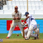 Colts Cup Match Bermuda, July 26 2015-78