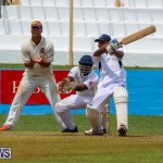 Colts Cup Match Bermuda, July 26 2015-79