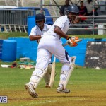 Colts Cup Match Bermuda, July 26 2015-8