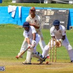 Colts Cup Match Bermuda, July 26 2015-87