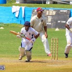 Colts Cup Match Bermuda, July 26 2015-88