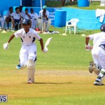 Colts Cup Match Bermuda, July 26 2015-94