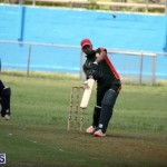Cricket Premier & First Division July 1 2015 (10)