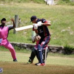 Cricket Premier & First Division July 1 2015 (14)