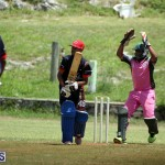 Cricket Premier & First Division July 1 2015 (19)